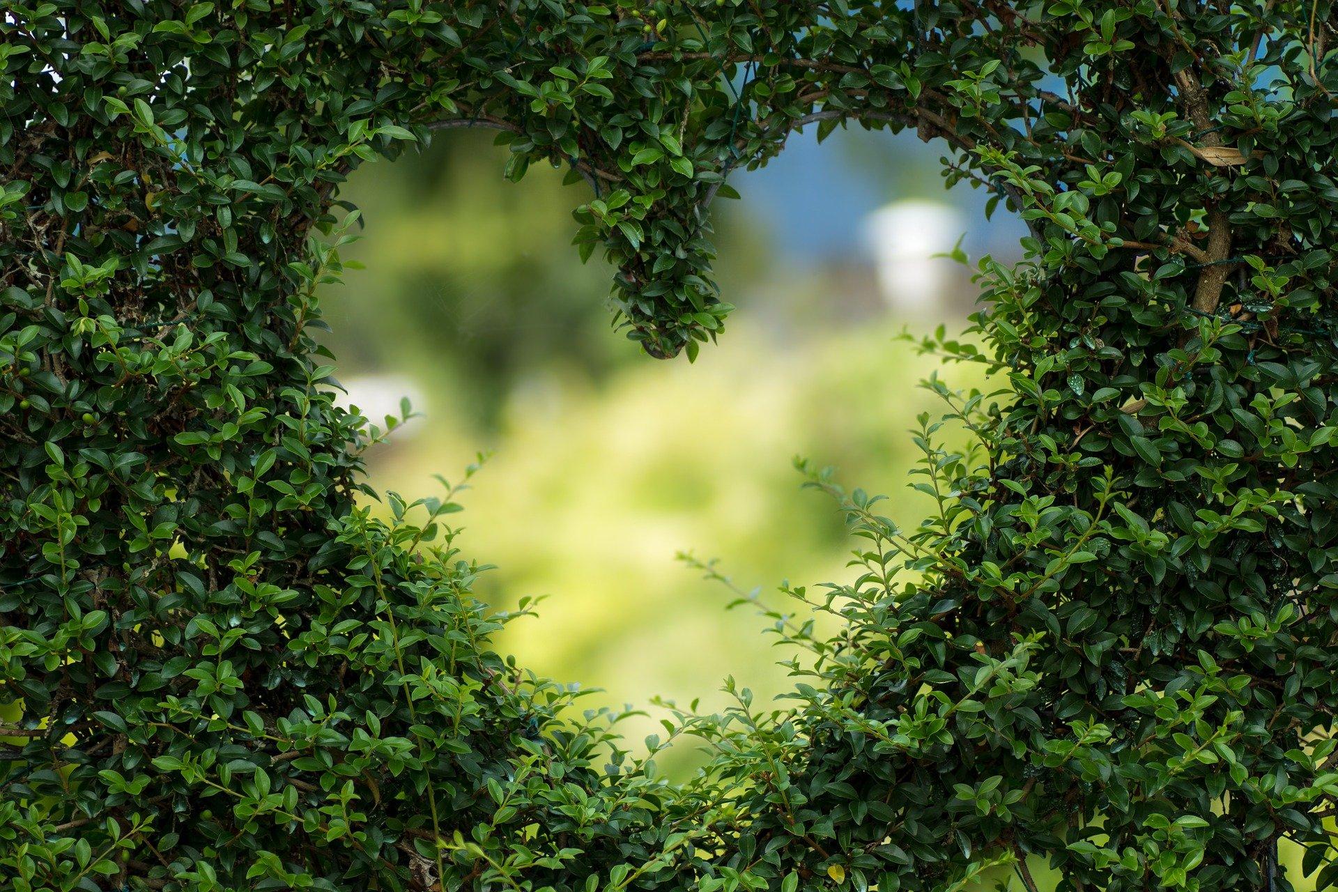 Párkapcsolati tanácsok - maradj szerelmes