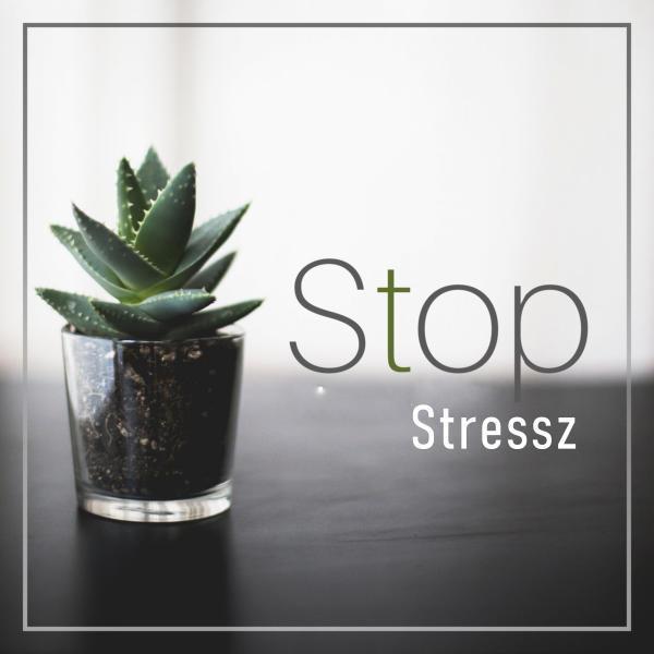 De nem akarod, hogy a stressz határozza meg az életed, és végül az elváló 60%-ba tartozz?